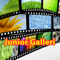 Junior galleri